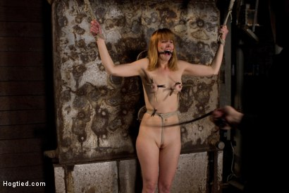 Photo number 6 from Clothes pins are whipped off this sexy amazons body. Nasty Crotch rope keeps her screaming & cumming shot for Hogtied on Kink.com. Featuring Mallory Mallone in hardcore BDSM & Fetish porn.
