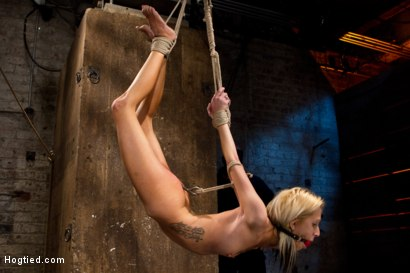 Photo number 7 from Hot flexible blond suffers a Category 5 suspension. Anal hook, heavy nipple weights, made to cum. shot for Hogtied on Kink.com. Featuring Rene Phoenix in hardcore BDSM & Fetish porn.