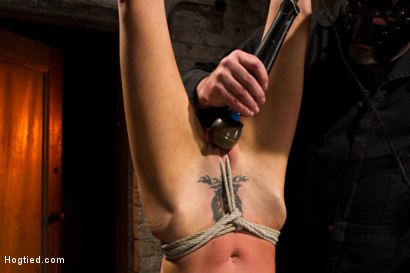 Photo number 13 from Tiny Southern Belle hung upside down, clamped, flogged, her huge nipples tortured, made to cum hard! shot for Hogtied on Kink.com. Featuring Rene Phoenix in hardcore BDSM & Fetish porn.
