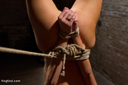 Photo number 14 from Tiny Southern Belle hung upside down, clamped, flogged, her huge nipples tortured, made to cum hard! shot for Hogtied on Kink.com. Featuring Rene Phoenix in hardcore BDSM & Fetish porn.