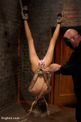 Photo number 3 from Tiny Southern Belle hung upside down, clamped, flogged, her huge nipples tortured, made to cum hard! shot for Hogtied on Kink.com. Featuring Rene Phoenix in hardcore BDSM & Fetish porn.