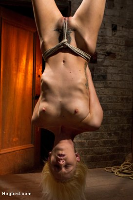 Photo number 4 from Tiny Southern Belle hung upside down, clamped, flogged, her huge nipples tortured, made to cum hard! shot for Hogtied on Kink.com. Featuring Rene Phoenix in hardcore BDSM & Fetish porn.