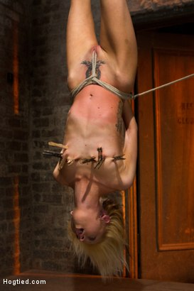 Photo number 7 from Tiny Southern Belle hung upside down, clamped, flogged, her huge nipples tortured, made to cum hard! shot for Hogtied on Kink.com. Featuring Rene Phoenix in hardcore BDSM & Fetish porn.