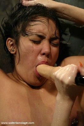 Photo number 7 from Maya shot for Water Bondage on Kink.com. Featuring Maya in hardcore BDSM & Fetish porn.