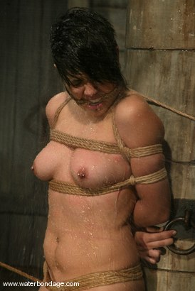 Photo number 13 from Maya shot for Water Bondage on Kink.com. Featuring Maya in hardcore BDSM & Fetish porn.