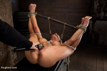 Photo number 9 from Sexy blond bomb shell w/huge tits, is anally penetrated, nipple tormented, made to squirt & cum! shot for Hogtied on Kink.com. Featuring Charisma Cappelli in hardcore BDSM & Fetish porn.