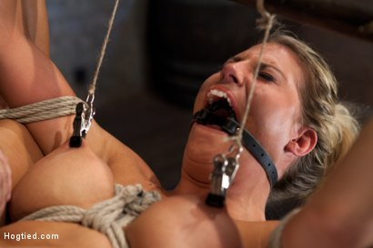 Photo number 8 from Sexy blond bomb shell w/huge tits, is anally penetrated, nipple tortured, made to squirt & cum! shot for Hogtied on Kink.com. Featuring Charisma Cappelli in hardcore BDSM & Fetish porn.