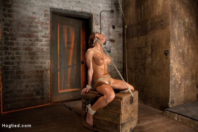 Photo number 14 from 1 of Porns Hottest Bodies steps into the dark world of BDSM. Someone stepped into the wrong basement shot for Hogtied on Kink.com. Featuring Aleksa Nicole in hardcore BDSM & Fetish porn.