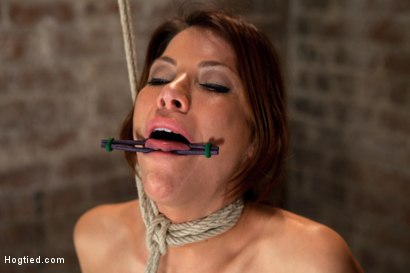 Photo number 8 from 1 of Porns Hottest Bodies steps into the dark world of BDSM. Someone stepped into the wrong basement shot for Hogtied on Kink.com. Featuring Aleksa Nicole in hardcore BDSM & Fetish porn.