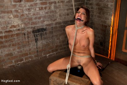 Photo number 9 from 1 of Porns Hottest Bodies steps into the dark world of BDSM. Someone stepped into the wrong basement shot for Hogtied on Kink.com. Featuring Aleksa Nicole in hardcore BDSM & Fetish porn.