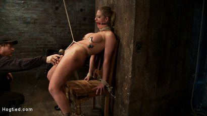 Photo number 8 from Part 1/4 of Decembers live show with Holly heart:<br>A back arching, pussy destroying tie from hell. shot for Hogtied on Kink.com. Featuring Isis Love, Matt Williams and Holly Heart in hardcore BDSM & Fetish porn.