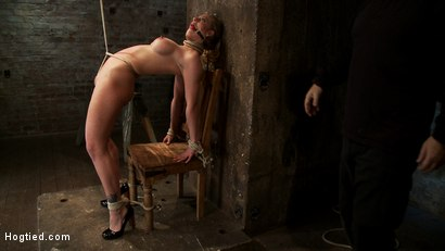 Photo number 10 from Part 1/4 of Decembers live show with Holly heart:<br>A back arching, pussy destroying tie from hell. shot for Hogtied on Kink.com. Featuring Isis Love, Matt Williams and Holly Heart in hardcore BDSM & Fetish porn.