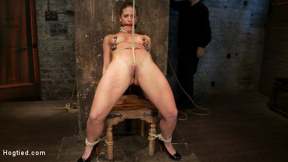 Photo number 7 from Part 1/4 of Decembers live show with Holly heart:<br>A back arching, pussy destroying tie from hell. shot for Hogtied on Kink.com. Featuring Isis Love, Matt Williams and Holly Heart in hardcore BDSM & Fetish porn.