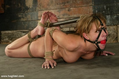 Photo number 13 from Audrey Leigh shot for Hogtied on Kink.com. Featuring Audrey Leigh in hardcore BDSM & Fetish porn.