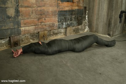 Photo number 15 from Veronika shot for Hogtied on Kink.com. Featuring Veronika in hardcore BDSM & Fetish porn.