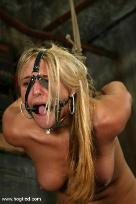 Photo number 8 from Veronika shot for Hogtied on Kink.com. Featuring Veronika in hardcore BDSM & Fetish porn.