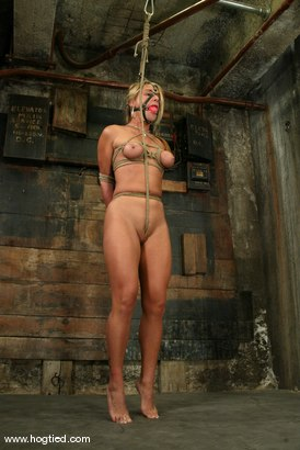 Photo number 4 from Veronika shot for Hogtied on Kink.com. Featuring Veronika in hardcore BDSM & Fetish porn.