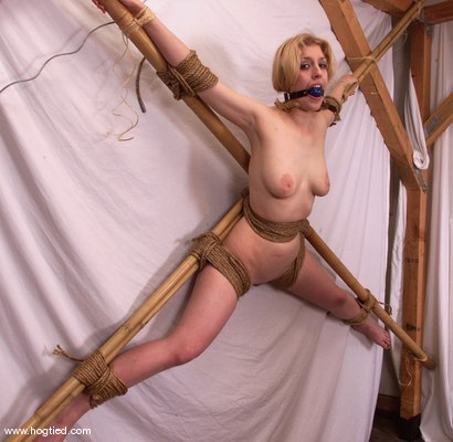 Photo number 14 from Cowgirl shot for Hogtied on Kink.com. Featuring Cowgirl in hardcore BDSM & Fetish porn.
