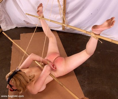 Photo number 12 from Cowgirl shot for Hogtied on Kink.com. Featuring Cowgirl in hardcore BDSM & Fetish porn.