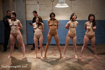 Photo number 7 from 5 Girl Intake<br>Selecting the perfect slave to train shot for The Training Of O on Kink.com. Featuring Lillianne Lane, Lyla Storm, Kayla Kay, Kristine Kahill, Maestro Stefanos and Arabelle Raphael in hardcore BDSM & Fetish porn.
