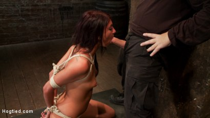 Photo number 3 from 19 yr old girl next door, is severely bound, brutally skull fucked! Hogtied suspended made to cum! shot for Hogtied on Kink.com. Featuring Cassandra Nix in hardcore BDSM & Fetish porn.
