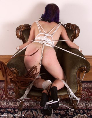 Photo number 2 from Analiese and Danarama shot for Hogtied on Kink.com. Featuring Analiese and Danarama in hardcore BDSM & Fetish porn.
