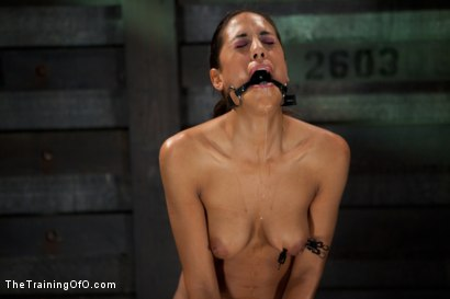 Photo number 11 from Slave Training Lyla Storm<br>Day 2-Endurance Testing shot for The Training Of O on Kink.com. Featuring Lyla Storm in hardcore BDSM & Fetish porn.
