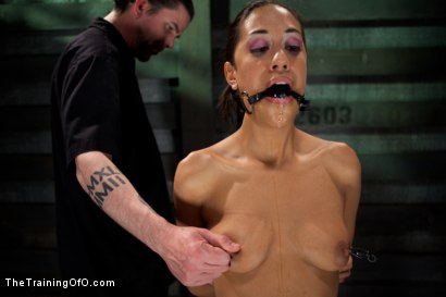 Photo number 15 from Slave Training Lyla Storm<br>Day 2-Endurance Testing shot for The Training Of O on Kink.com. Featuring Lyla Storm in hardcore BDSM & Fetish porn.