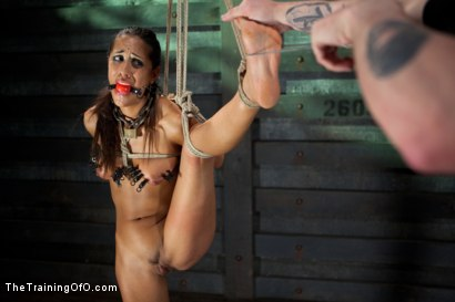 Photo number 9 from Slave Training of Lyla Storm  Day 3-Sexual Abilities shot for The Training Of O on Kink.com. Featuring Lyla Storm and Derrick Pierce in hardcore BDSM & Fetish porn.