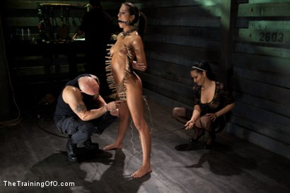 Photo number 2 from Slave Training of Lyla Storm<br>Day 4-Sexual Obedience  shot for The Training Of O on Kink.com. Featuring Lyla Storm, Derrick Pierce and Isis Love in hardcore BDSM & Fetish porn.