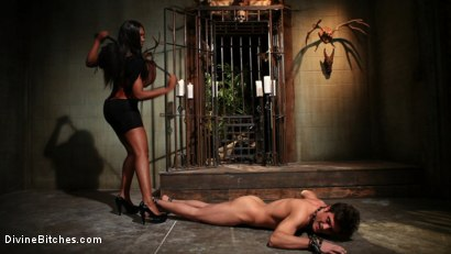 Photo number 1 from Worship Her Greatness! shot for Divine Bitches on Kink.com. Featuring Nyomi Banxxx and Lance Hart in hardcore BDSM & Fetish porn.
