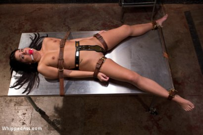 Photo number 15 from Psyche Ward:  Lesbian Cuckold Therapy shot for Whipped Ass on Kink.com. Featuring Ashley Fires, Shane Dos Santos and Aiden Starr in hardcore BDSM & Fetish porn.