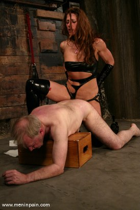 Photo number 14 from Kym Wilde and Robert Alan shot for Men In Pain on Kink.com. Featuring Kym Wilde and Robert Alan in hardcore BDSM & Fetish porn.