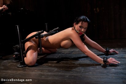 Photo number 2 from From the Vault - Aiden Starr  and Phoenix Marie shot for Device Bondage on Kink.com. Featuring Phoenix Marie in hardcore BDSM & Fetish porn.