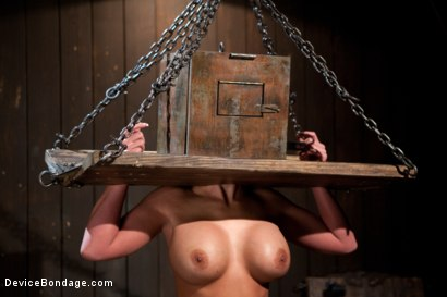 Photo number 13 from From the Vault - Aiden Starr  and Phoenix Marie shot for Device Bondage on Kink.com. Featuring Phoenix Marie in hardcore BDSM & Fetish porn.