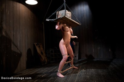 Photo number 15 from From the Vault - Aiden Starr  and Phoenix Marie shot for Device Bondage on Kink.com. Featuring Phoenix Marie in hardcore BDSM & Fetish porn.