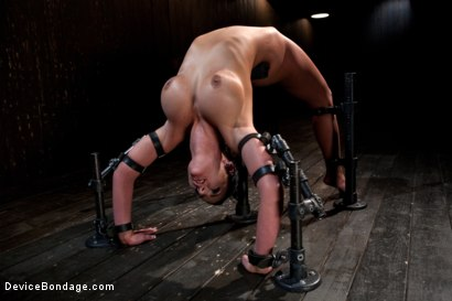 Photo number 10 from From the Vault - Aiden Starr  and Phoenix Marie shot for Device Bondage on Kink.com. Featuring Phoenix Marie in hardcore BDSM & Fetish porn.