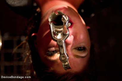 Photo number 13 from Young slut feels the wrath of inescapable devices while enduring extreme torture   shot for Device Bondage on Kink.com. Featuring Aiden Starr, Cassandra Nix and Ian Rath in hardcore BDSM & Fetish porn.