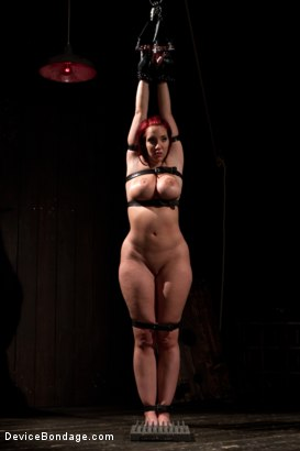 Photo number 15 from <b>Kelly Divine: Stretched, Fucked, Flogged, and Squirting Everywhere; Rosebud Exposed!!</b> shot for Device Bondage on Kink.com. Featuring Kelly Divine and Tom Moore in hardcore BDSM & Fetish porn.