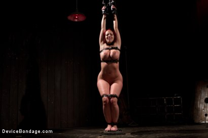 Photo number 6 from <b>Kelly Divine: Stretched, Fucked, Flogged, and Squirting Everywhere; Rosebud Exposed!!</b> shot for Device Bondage on Kink.com. Featuring Kelly Divine and Tom Moore in hardcore BDSM & Fetish porn.