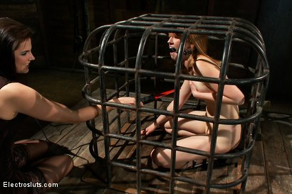 Photo number 13 from Surprising Shocks from a Metal Cage shot for Electro Sluts on Kink.com. Featuring Bobbi Starr and Mallory Mallone in hardcore BDSM & Fetish porn.