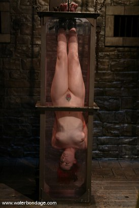 Photo number 6 from Dana DeArmond shot for Water Bondage on Kink.com. Featuring Dana DeArmond in hardcore BDSM & Fetish porn.