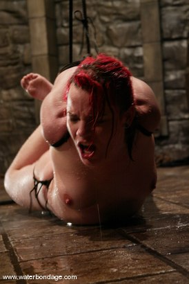 Photo number 14 from Dana DeArmond shot for Water Bondage on Kink.com. Featuring Dana DeArmond in hardcore BDSM & Fetish porn.
