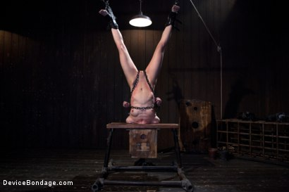 Photo number 12 from Elise Graves - Harsh Treatment and Predicaments Noir Style - by The Pope! shot for Device Bondage on Kink.com. Featuring Elise Graves in hardcore BDSM & Fetish porn.