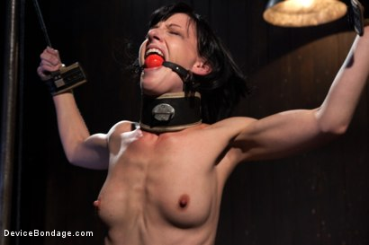 Photo number 3 from Elise Graves - Harsh Treatment and Predicaments Noir Style - by The Pope! shot for Device Bondage on Kink.com. Featuring Elise Graves in hardcore BDSM & Fetish porn.