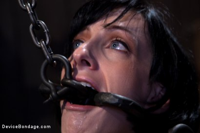Photo number 15 from Elise Graves - Harsh Treatment and Predicaments Noir Style - by The Pope! shot for Device Bondage on Kink.com. Featuring Elise Graves in hardcore BDSM & Fetish porn.