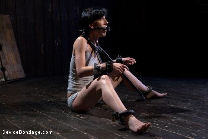 Photo number 18 from Elise Graves - Harsh Treatment and Predicaments Noir Style - by The Pope! shot for Device Bondage on Kink.com. Featuring Elise Graves in hardcore BDSM & Fetish porn.