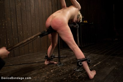 Photo number 5 from Cherry Torn gets all tore up as she gets her ass whipped all to hell! shot for Device Bondage on Kink.com. Featuring Cherry Torn and James Deen in hardcore BDSM & Fetish porn.