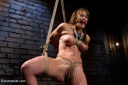 Photo number 9 from Felony, Electro-sex and the Cattle Prod shot for Electro Sluts on Kink.com. Featuring Bobbi Starr and Felony in hardcore BDSM & Fetish porn.