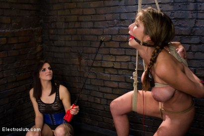 Photo number 8 from Felony, Electro-sex and the Cattle Prod shot for Electro Sluts on Kink.com. Featuring Bobbi Starr and Felony in hardcore BDSM & Fetish porn.
